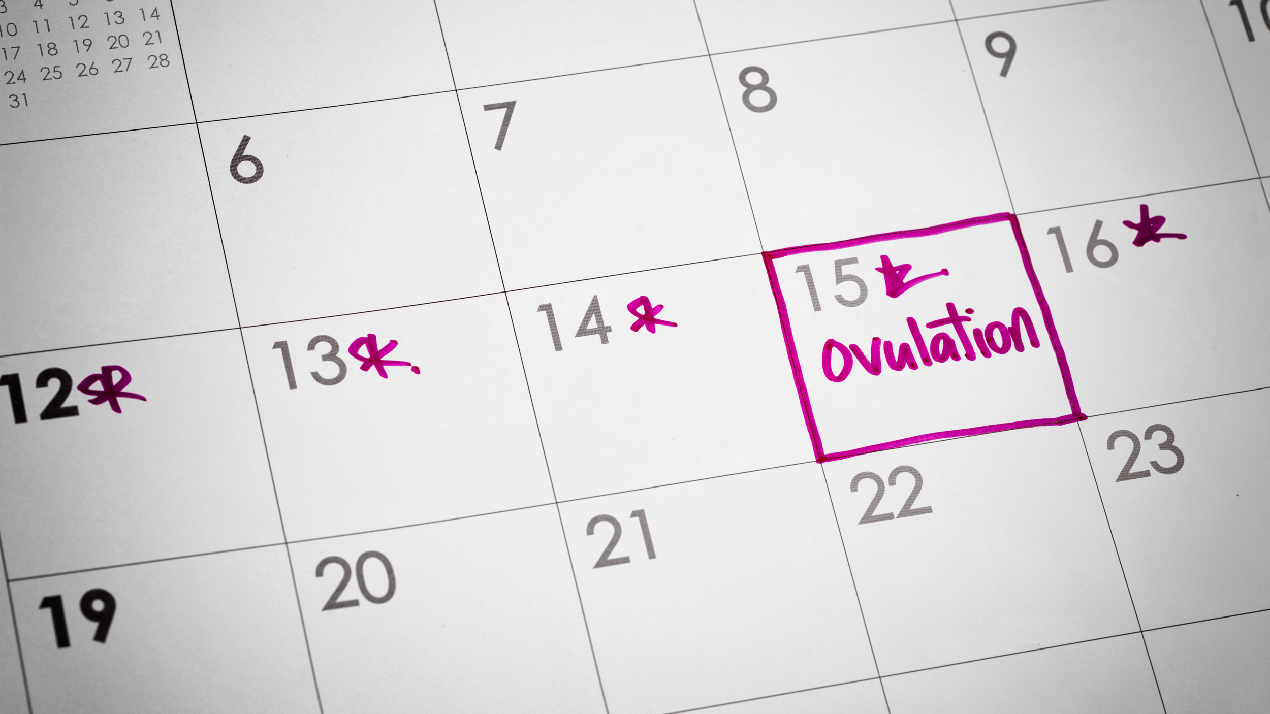 Ask Dr. Annie K: Ovulation